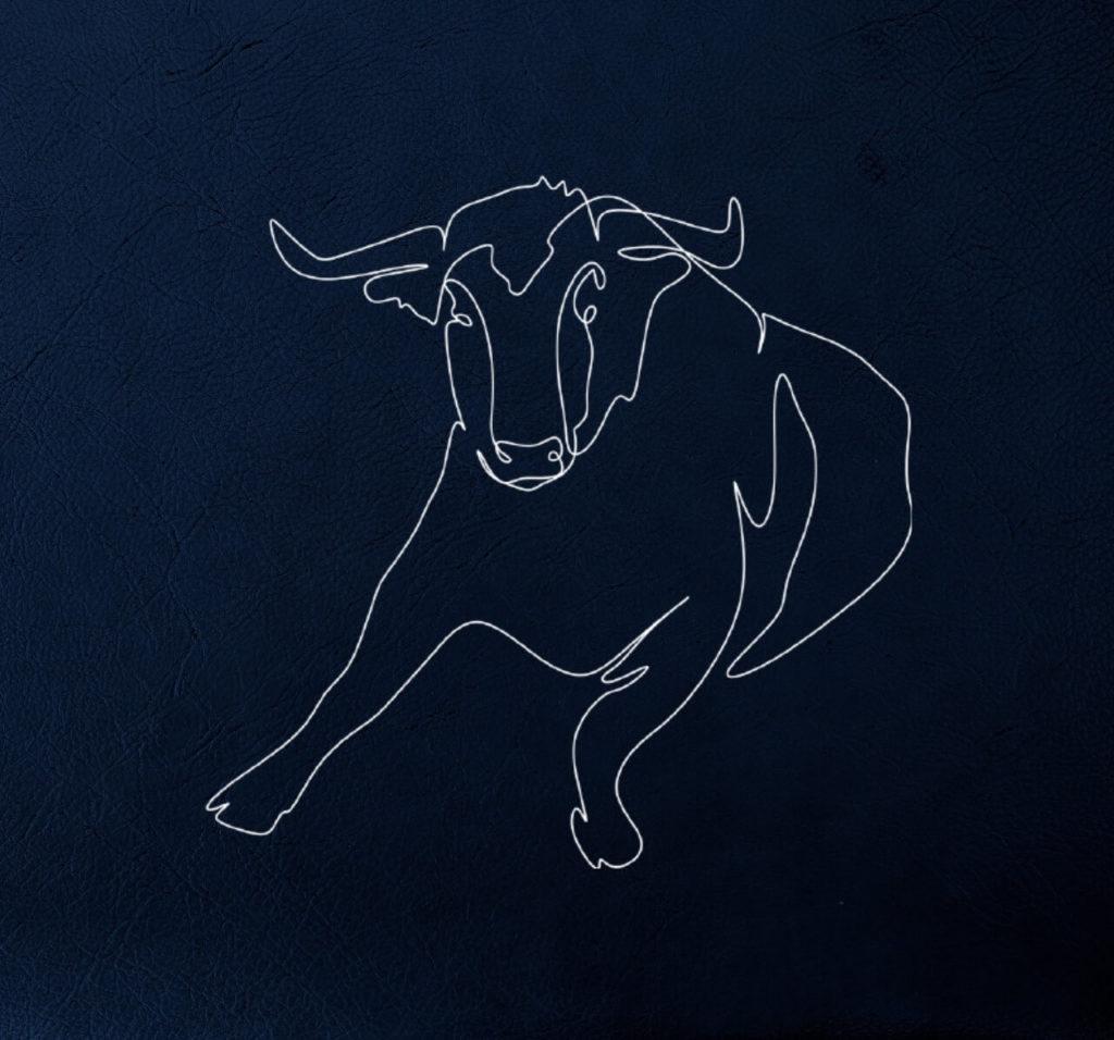 bull contour