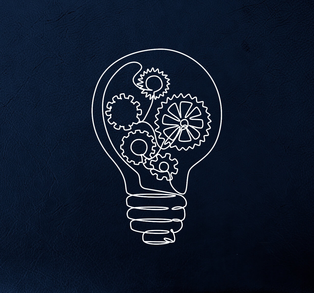 the contours of the light bulb